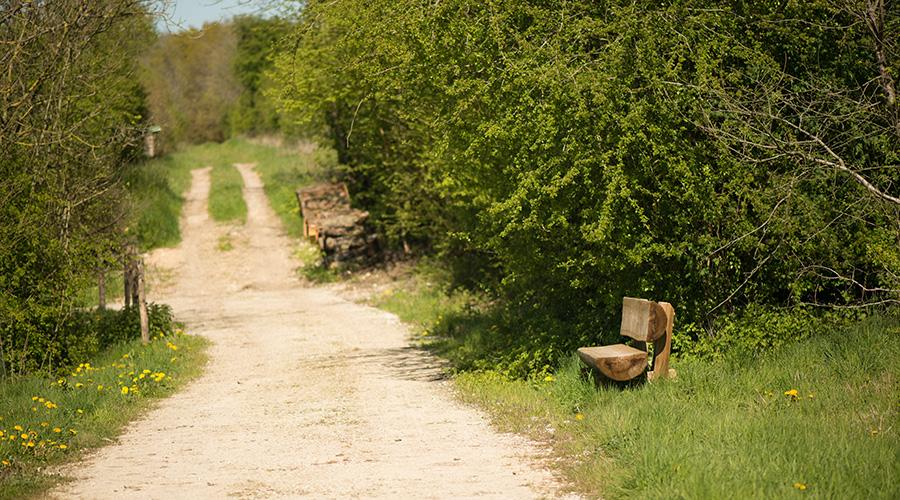 La Hardonnerie, éducation, pédagogie, poules, visite, parcours, ferme, refuge, nature