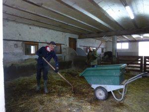 Nettoyage des enclos