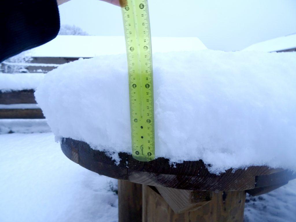 15 cm de neige à La Hardonnerie